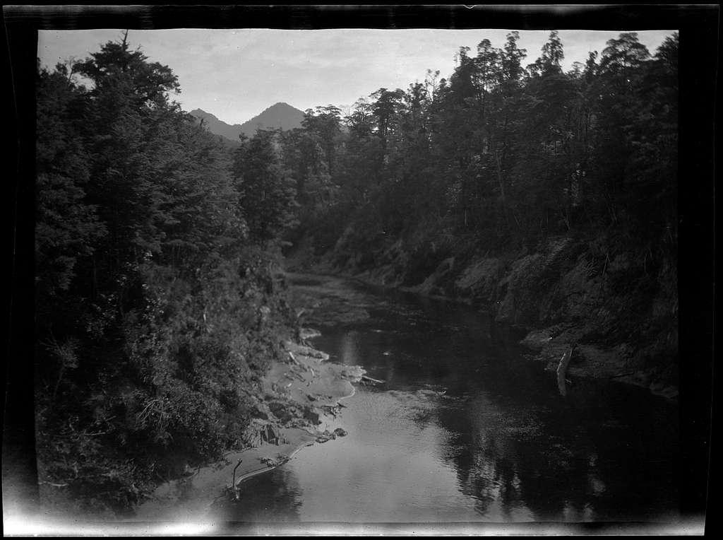 Pelorus River, Nelson