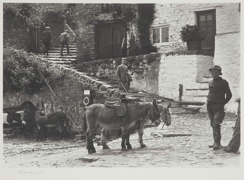 Clovelly. From the album: Photograph album - England