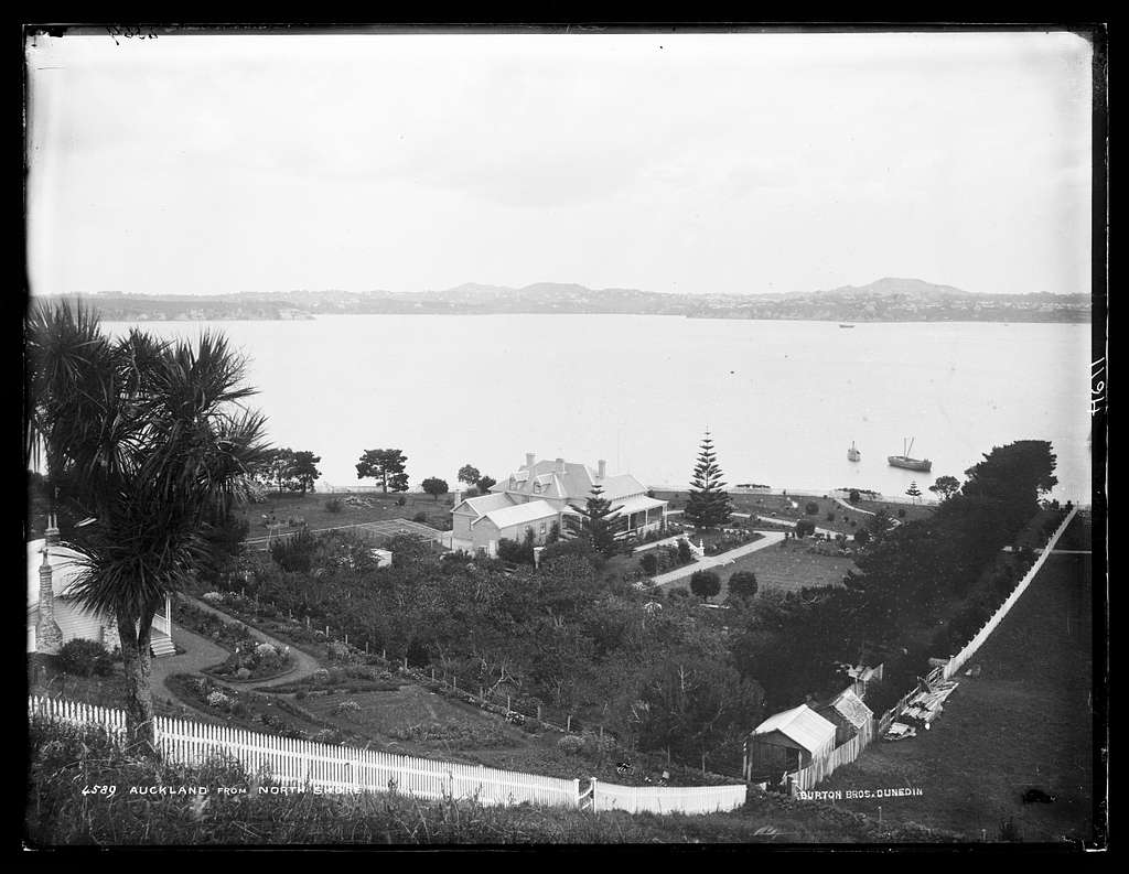 Auckland, from North Shore